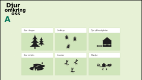 Djur omkring oss A för interaktiv skrivtavla.