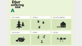 Bilden visar illustrationer av djur